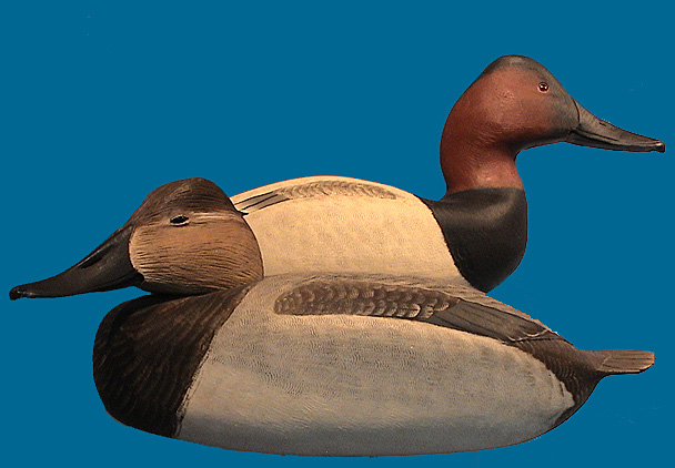 Corb Reed Canvasback pair