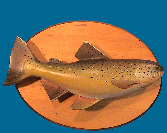 Thomas Cain Brown Trout plague
