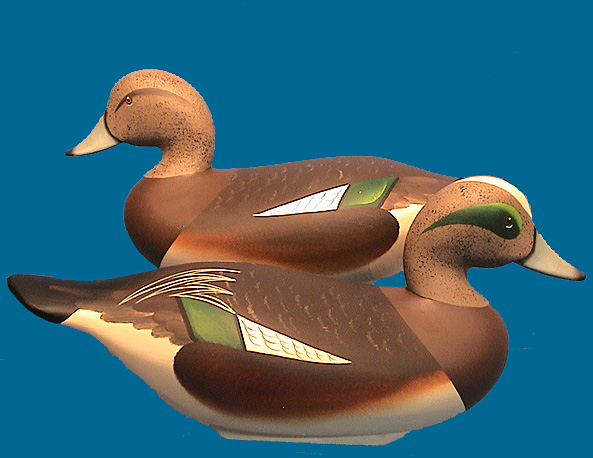 Bryan Widgeon pair
