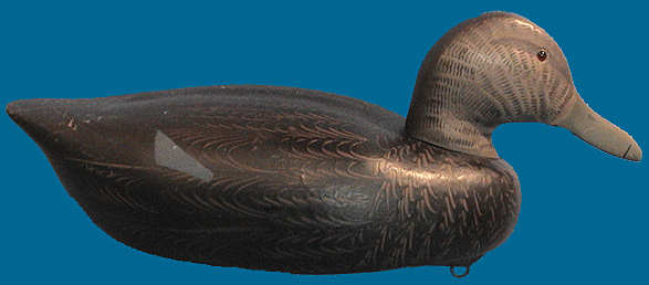 Decoys Unlimited Black Duck