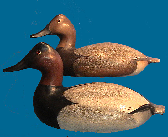 Oversized Canvasback pair by the Ward Brothers